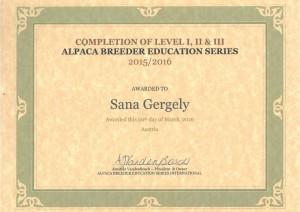 be Zertifikat